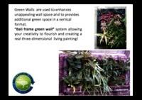 Green-wall-bali-frame.pdf