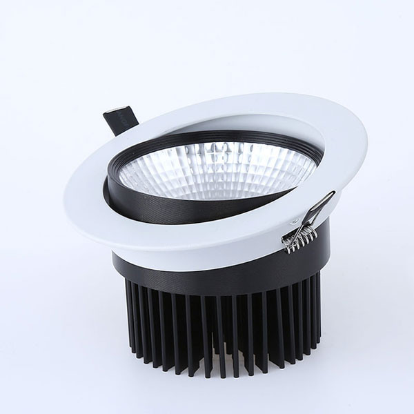 007W Recessed Downlight