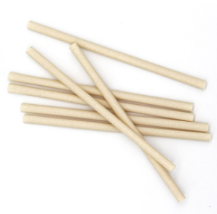 2019 New Style Eco-Friendly Pla Degradable Disposable Straight Drinking Straws