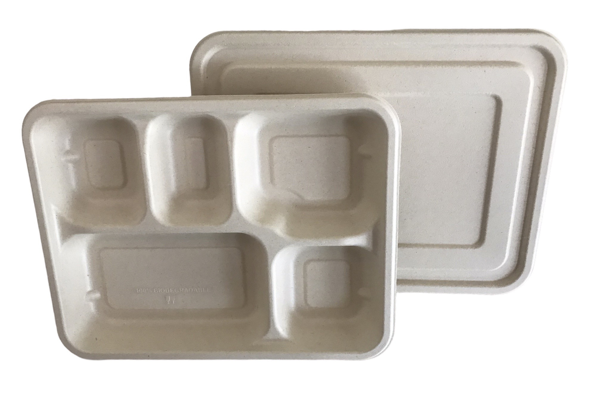 5 CP Tray with Lid