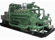 600kW Biogas Generator Set