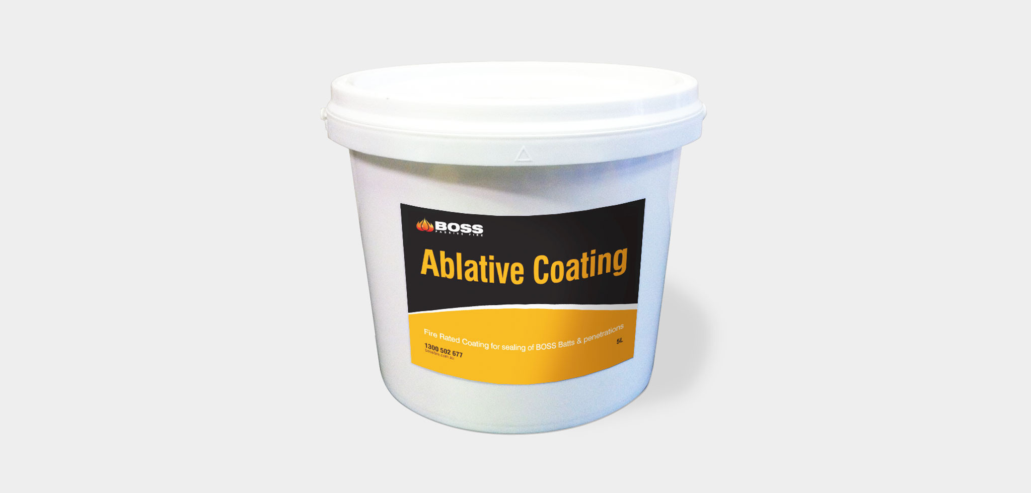 Ablative Coating
