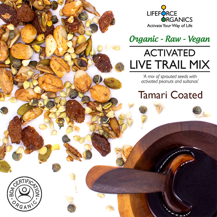 Activated 100% Organic Live Trail Mix