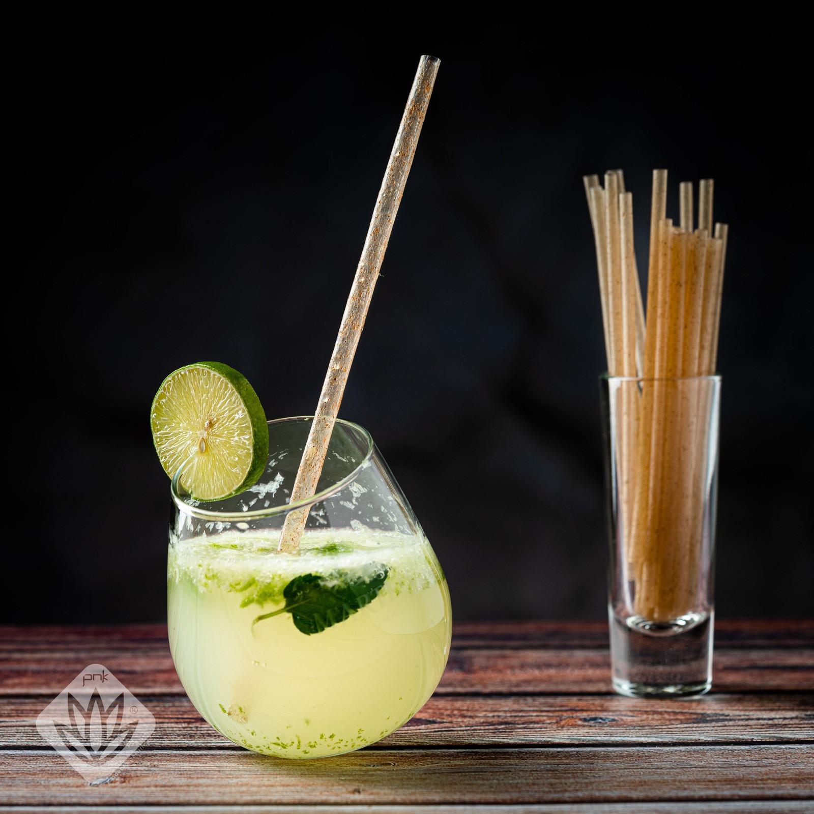 Agave Fiber Drinking Straw