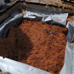 ArborRaft Soil