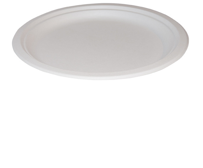 Bagasse Oval Plate