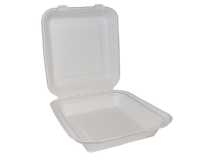 Bagasse Square Lunch Box