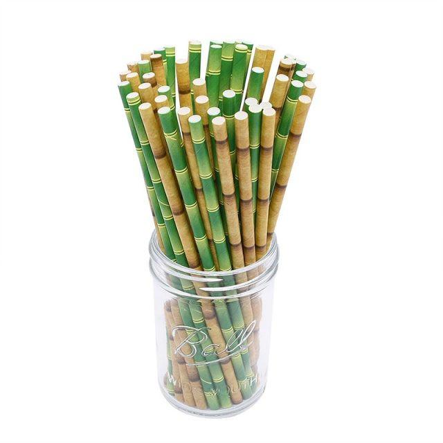 Bamboo Paper Drinking Strawws Set