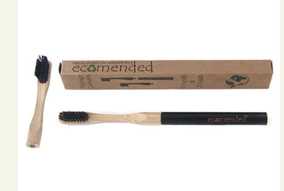 Bamboo toothbrush w/replaceable heads