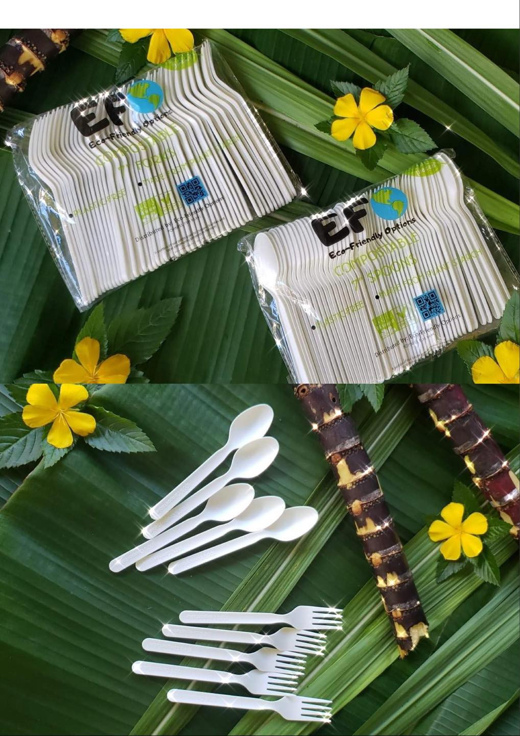Biogradable Cutlery