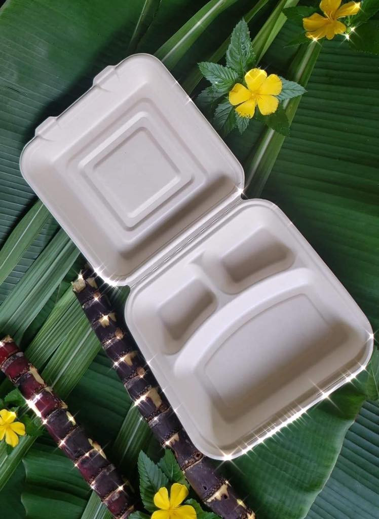 Biogradable Food Packaging Solution