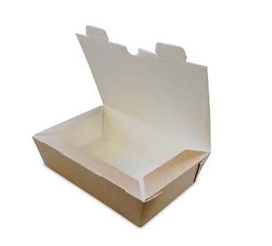 CFB-MED – 1000CC CORRUGATED HINGED BOX 180X120X50MM