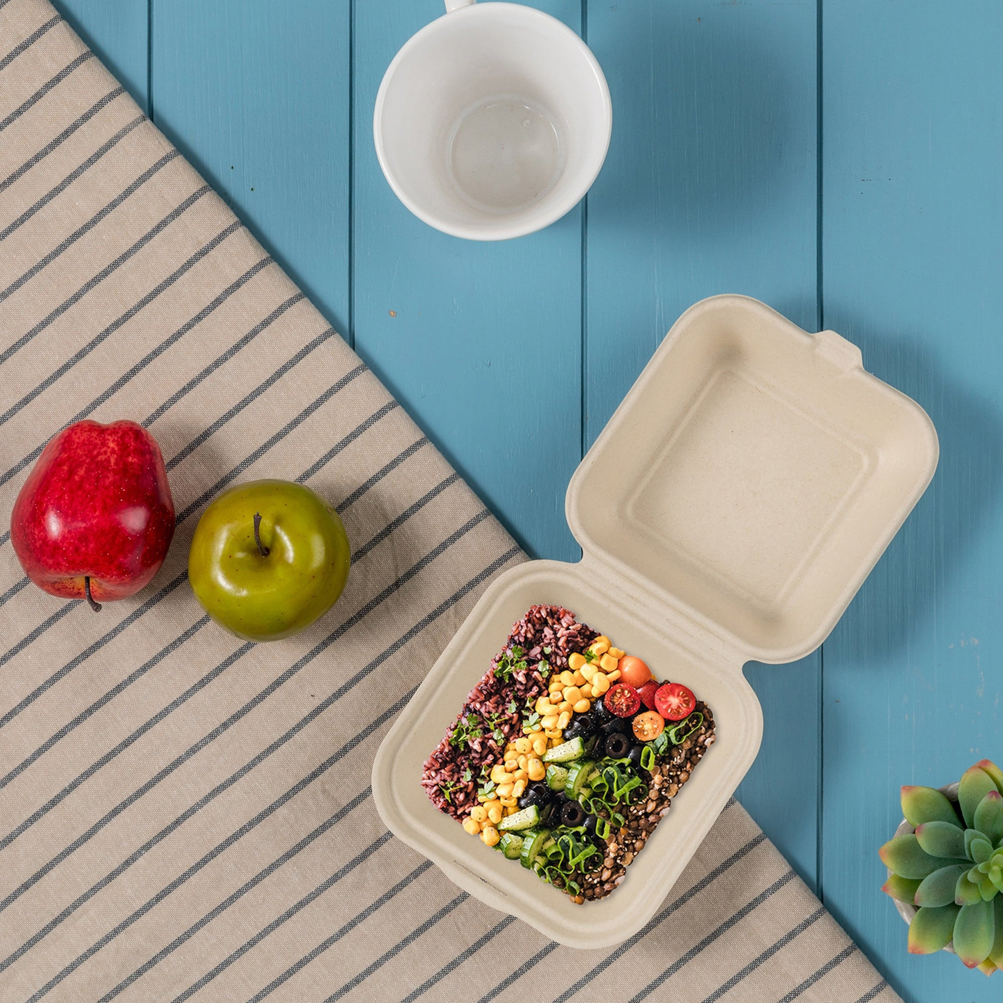 Bagasse Clamshell Container