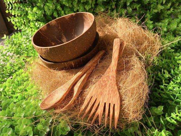Coconut Forks