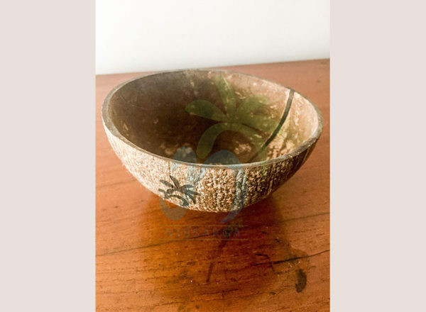 Coconut shell Bowls (02)