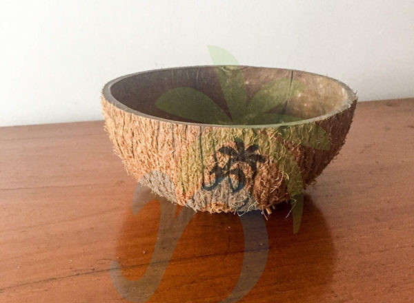 Coconut shell Bowls (03)