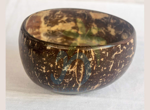 Coconut shell Bowls (05)