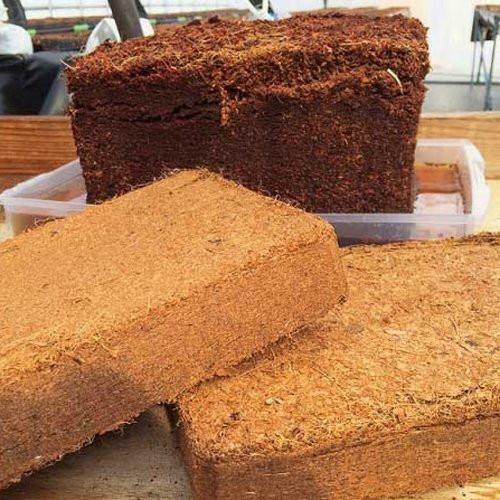 Compressed Coco Peat Blocks