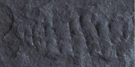 Devine Mushroom Stone