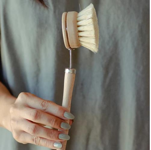Dish Brush - White Teakwood & Agave Fiber