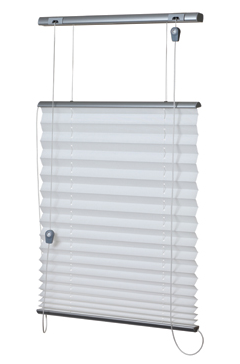 Duo Pleated Blind