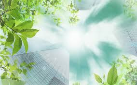 Environment & Sustainability Consultancy