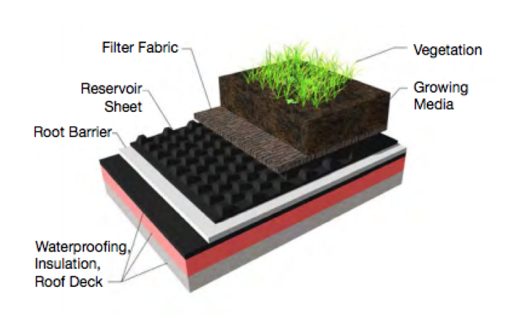 Green Roofing Systems
