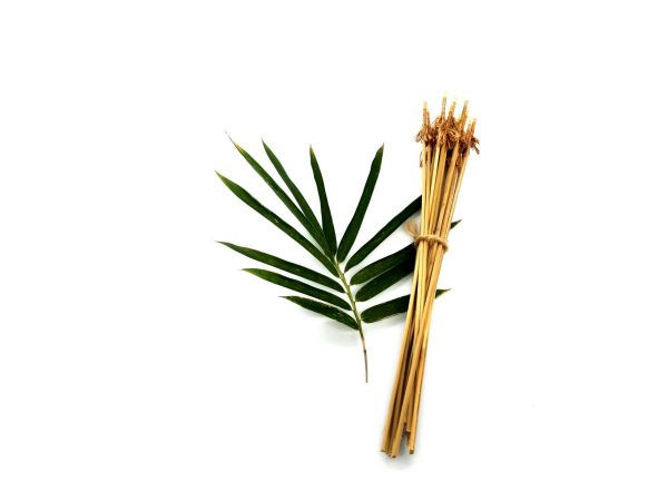 Handmade Bamboo Coconut Cleaning Brushes