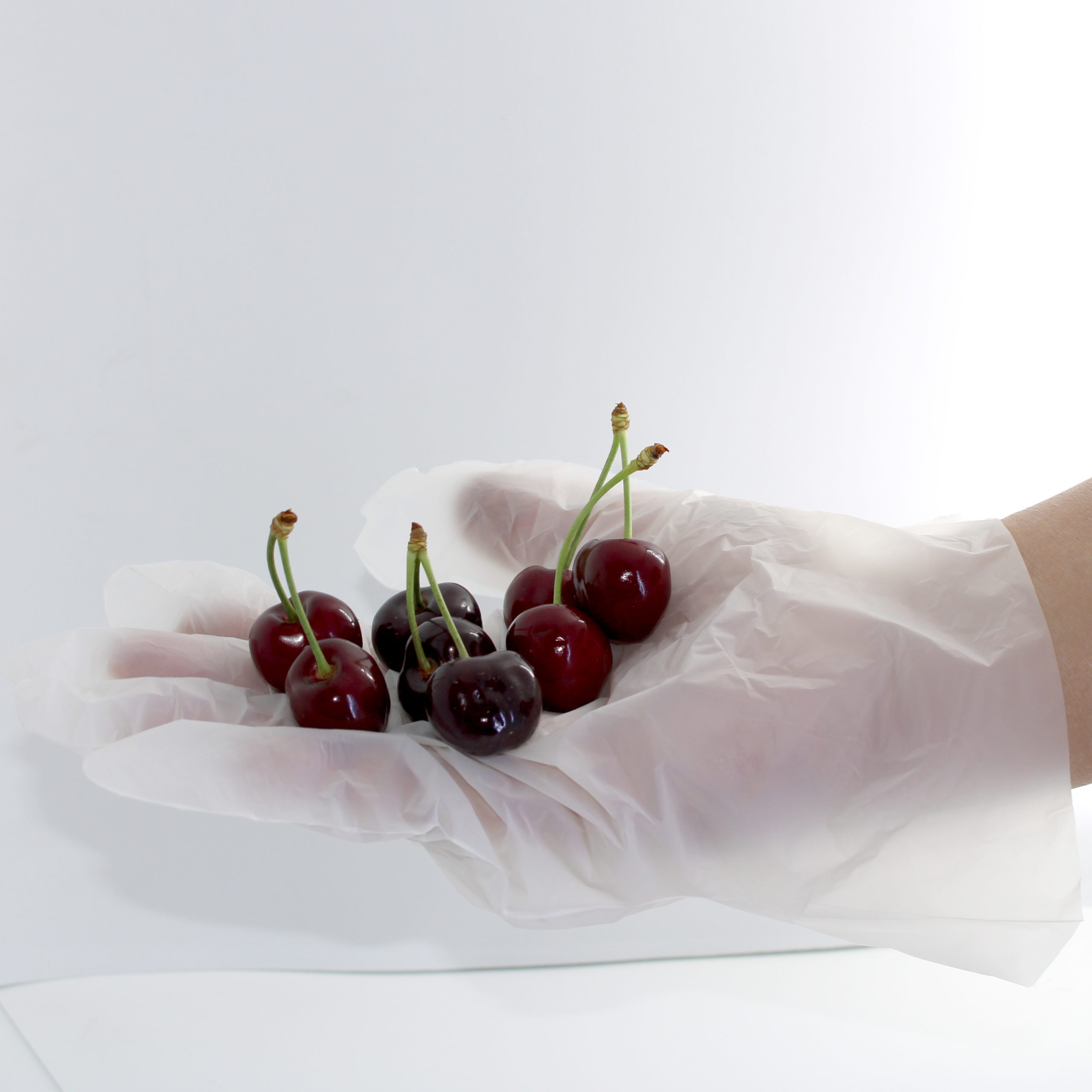 Home Compostable Gloves
