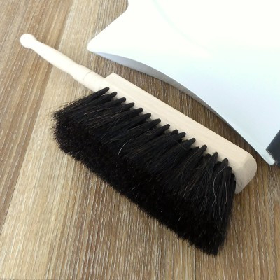 Horse Hair Dust Brush