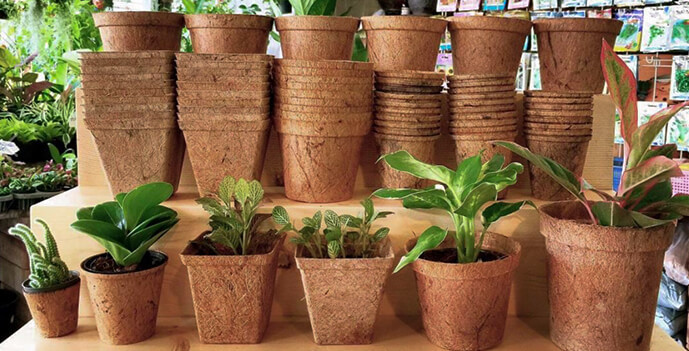 Horticulture - Coco Pots & Go Grow Kit