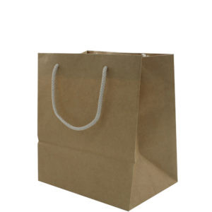 Kraft Gift Bags With Two Rope Handles (Reinforced Top & Base)