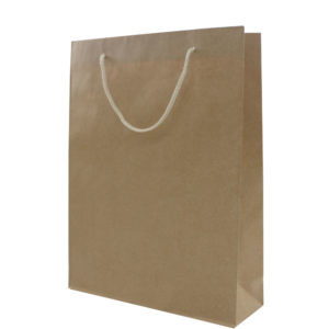Kraft Gift Bags With Two Rope Handles (Reinforced Top & Base) #L
