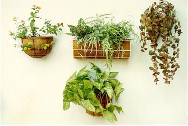 Moulded Rubberized Coir Plant Pots
