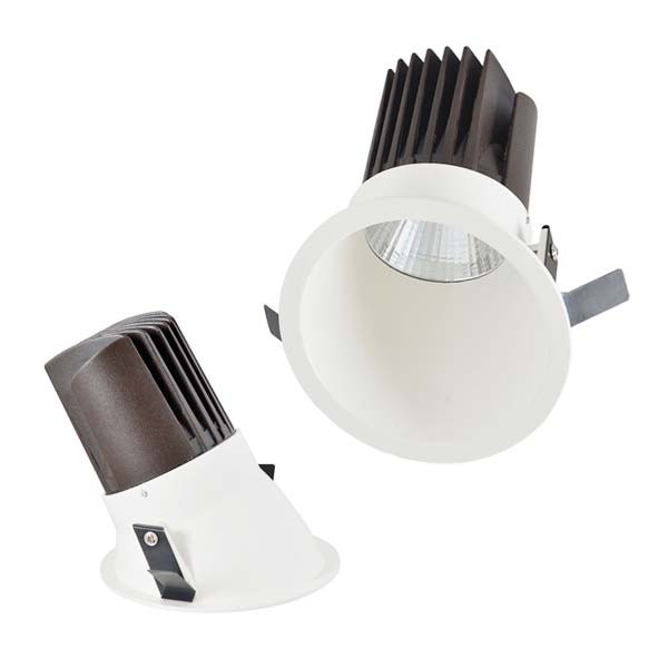 NA2 Asymmetrical Downlight