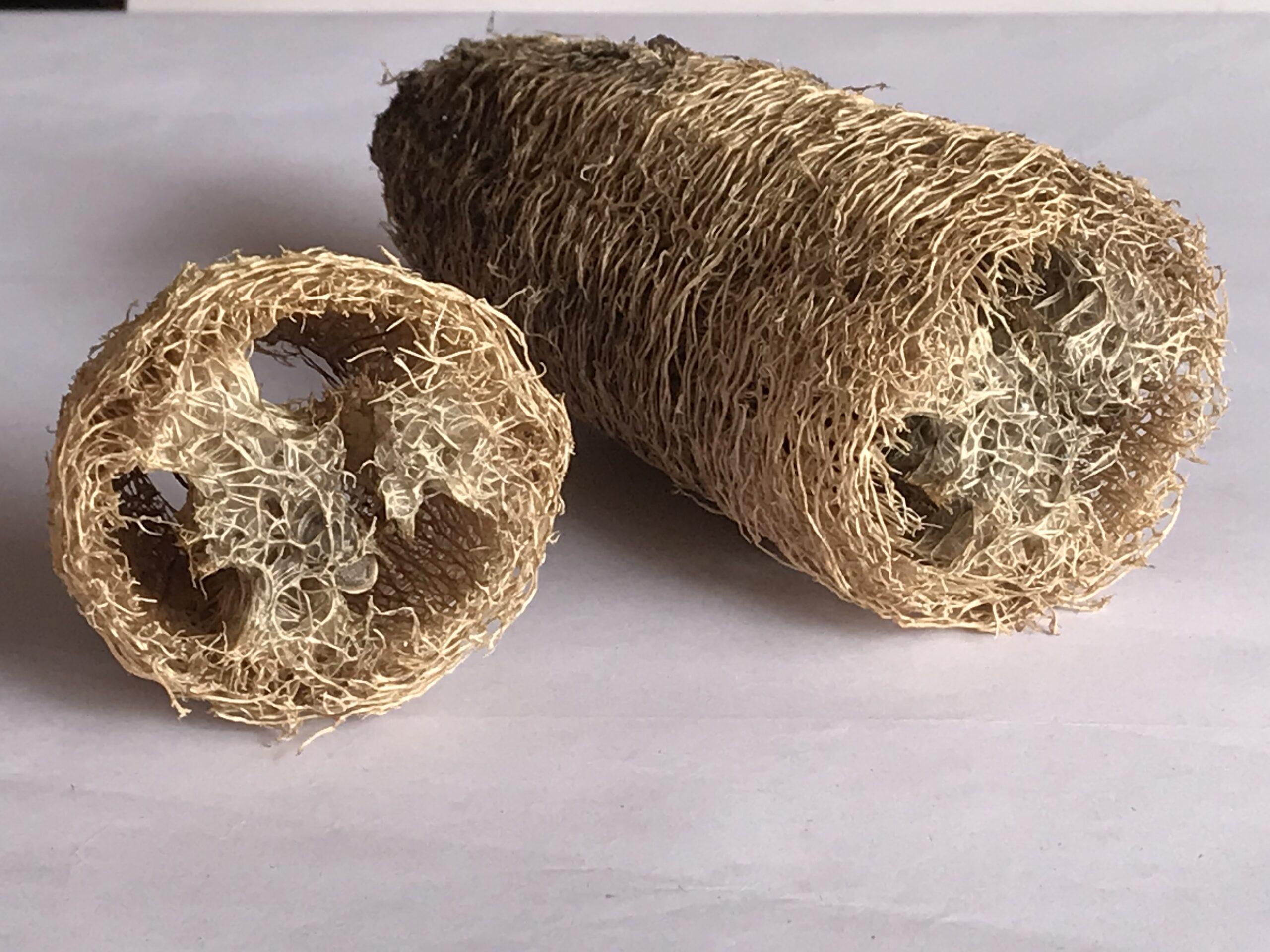 Natural Fibre Loofah