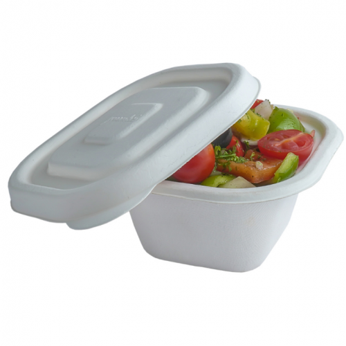 Organic and Biodegradable Takaway Container