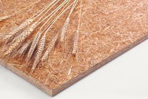 Oriented Structural Straw Board