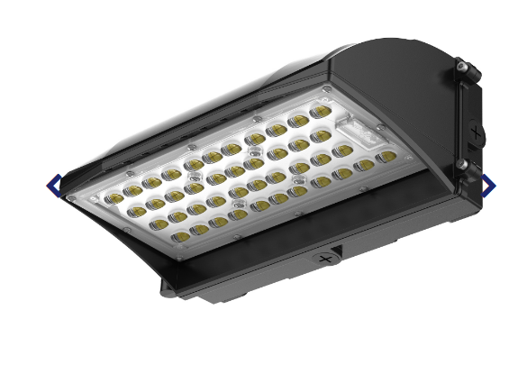 Phoenix LED Exterior Light