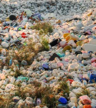 Plastic Waste Collection