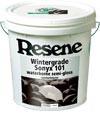 Resene Wintergrade Sonyx 101