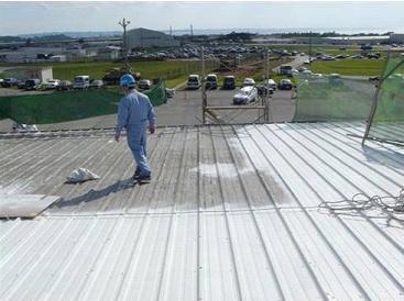 RoofCoat™