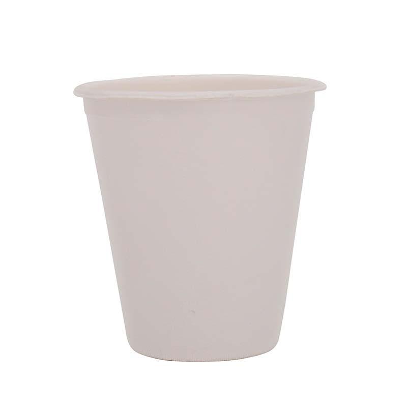 Sugarcane Bagasse Cup