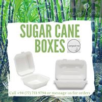 Sugarcane Take-away Boxes