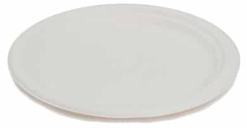 Sustain Bagasse Large Plate – 10″ / 25cm