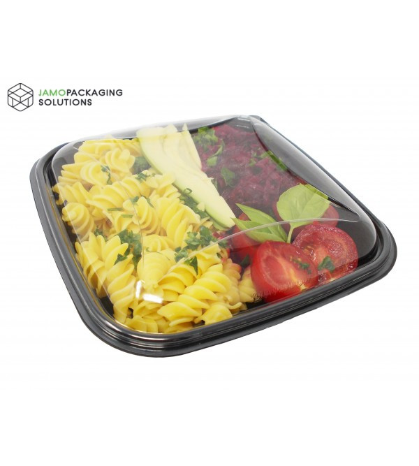 Take-out, Display Square, Dish Meal Food Prep Salad Sushi Container, Lunchbox