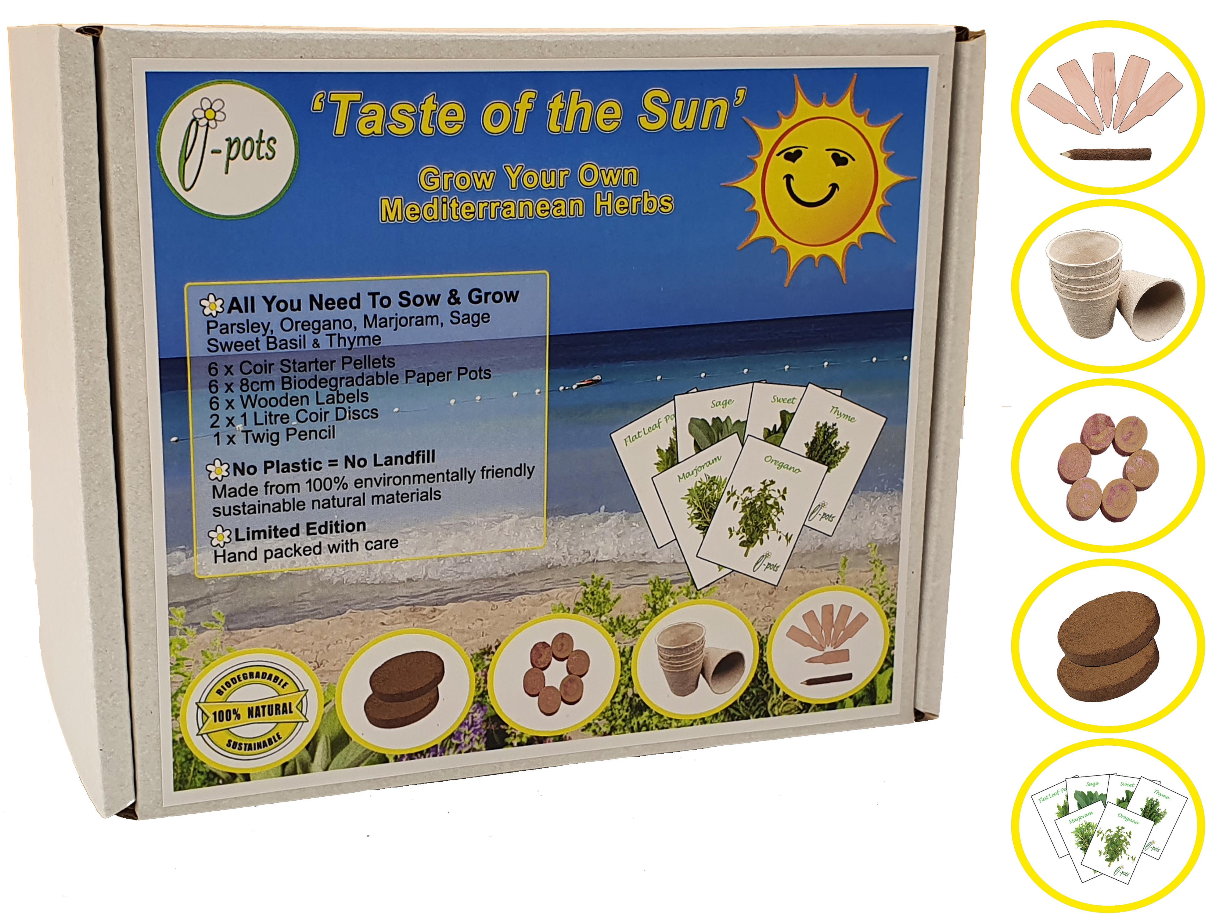 Taste of the Sun - Grow Your Own Mediterranean Herbs Kit