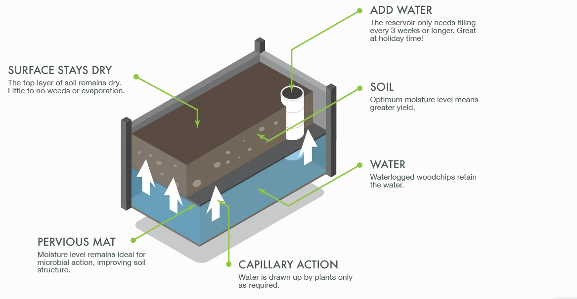 Wicking Bed System