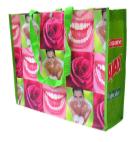 Woven PP Bags – Shopper Landscape
