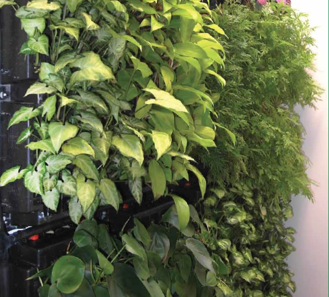 PlanterCell® 75 - Cassette type system for green wall